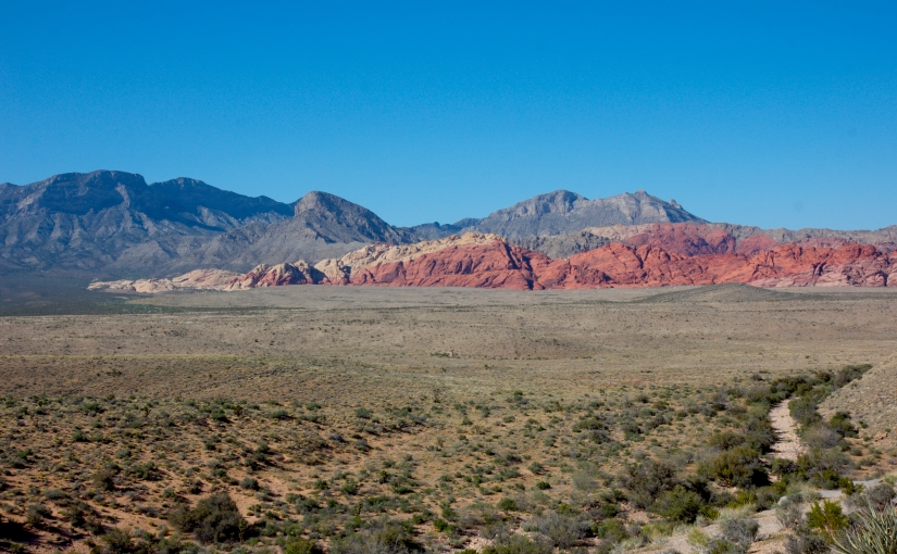 Red Rock Canyon: What to Do in Nevada's Hidden Gem